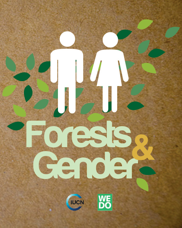 Forests and Gender
