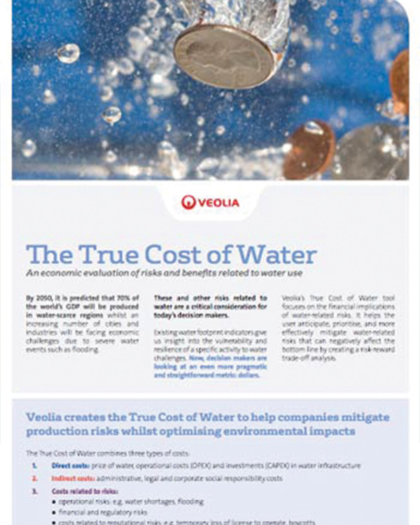 Veolia: The True Cost of Water