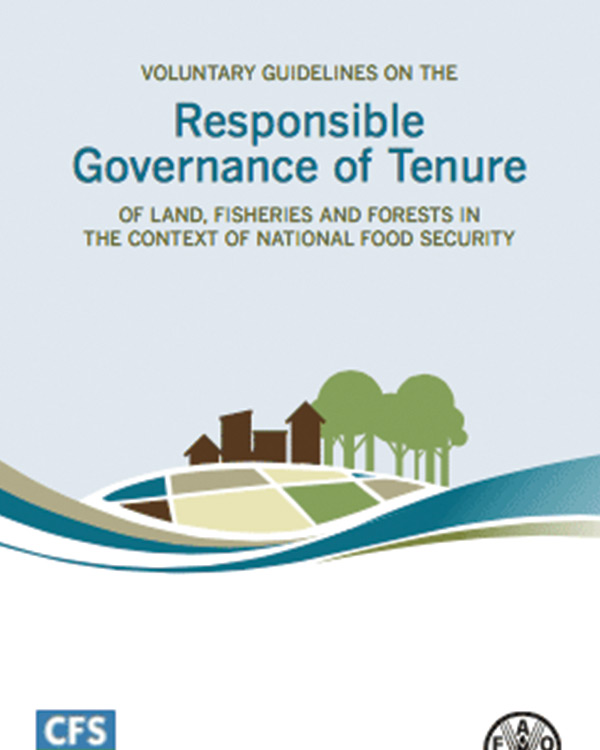 Voluntary Guidelines on the Responsible Governance of Tenure